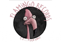 Interview with Flamingo Records
