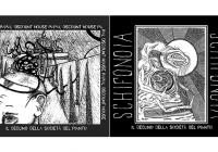 Review: Split Album Papal Discount House/Schifonoia – Il Declino della Società del Pianto