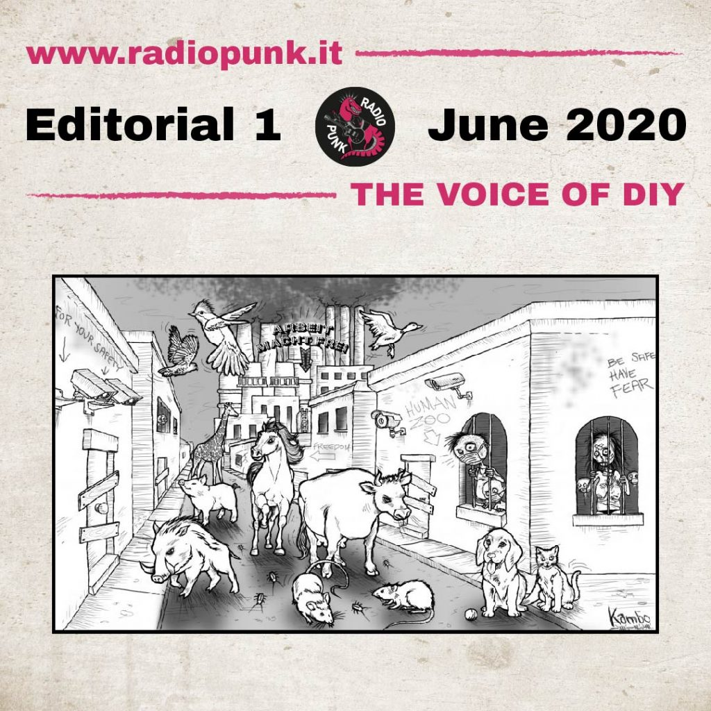 immagine copertina editoriale 1 giugno 2020 radio punk